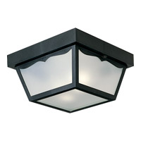 Signature 2 Light 10 inch Black Outdoor Ceiling Lantern