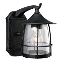 Prairie 1 Light 9 inch Gilded Iron Outdoor Wall Lantern