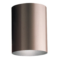 Cylinder LED Antique Bronze Outdoor Ceiling Mount