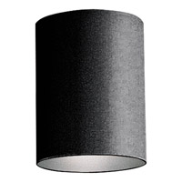 Cylinder 1 Light 5 inch Black Outdoor Ceiling Mount in Standard