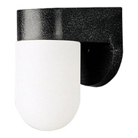 Polycarbonate Outdoor 1 Light 7 inch Black Outdoor Wall Lantern