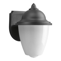 Polycarbonate Outdoor 1 Light 9 inch Black Outdoor Wall Lantern