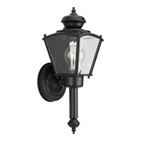 BrassGUARD 1 Light 15 inch Black Outdoor Wall Lantern