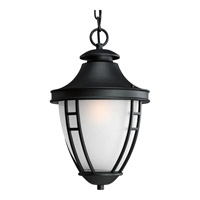 Progress Lighting Fairview 1 Light Outdoor Hanging in Textured Black P5848-31