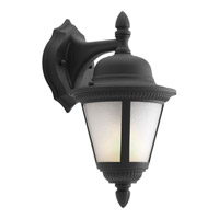 Westport 1 Light 13 inch Black Outdoor Wall Lantern in Bulbs Included, Etched Seeded