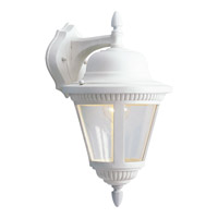 Westport 1 Light 16 inch White Outdoor Wall Lantern in Bulbs Not Included, Clear Seeded