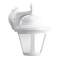 Westport LED 13 inch White Outdoor Wall Lantern in Integrated LED, Etched Seeded