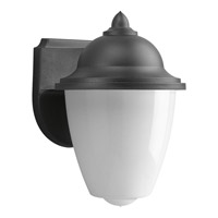 Non-Metallic 1 Light 9 inch Black Outdoor Wall Lantern
