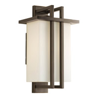 Progress Lighting Dibs Outdoor 1 Light Outdoor Wall in Antique Bronze P5990-20