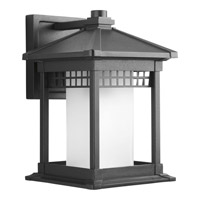 Merit 1 Light 12 inch Black Outdoor Wall Lantern