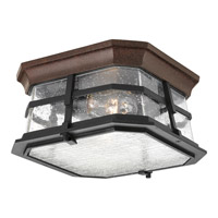 Progress P6017-84 Derby 2 Light 10 inch Espresso Flush Mount Ceiling Light in Clear Seeded