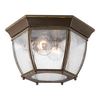 Progress Lighting Roman Coach 2 Light Outdoor Flush Mount in Antique Bronze P6019-20 photo thumbnail