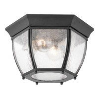 Roman Coach 2 Light 11 inch Black Outdoor Flush Mount