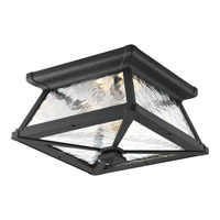 Mac 2 Light 11 inch Black Outdoor Close-to-Ceiling Lantern