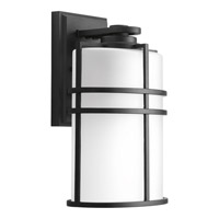 Format 1 Light 12 inch Black Outdoor Wall Lantern