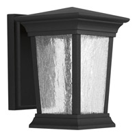Progress Arrive 1 Light Outdoor Wall Lantern in Black P6067-3130K9