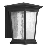 Progress Arrive 1 Light Outdoor Wall Lantern in Black P6068-3130K9
