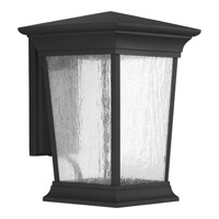 Progress Arrive 1 Light Outdoor Wall Lantern in Black P6069-3130K9