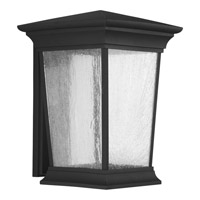 Progress Arrive 1 Light Outdoor Wall Lantern in Black P6076-3130K9