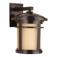 Wish 1 Light 13 inch Antique Bronze Outdoor Wall Lantern in Standard