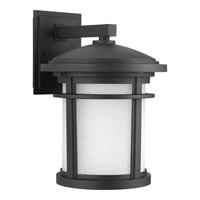 Wish 1 Light 13 inch Black Outdoor Wall Lantern in Standard