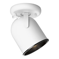 Directionals White 75 watt 1 Light Directional