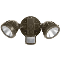 Motion Flood Light