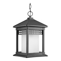 Progress P6500-31 Merit 1 Light 10 inch Black Outdoor Hanging Lantern