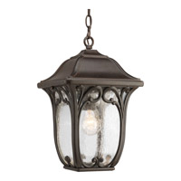Enchant 1 Light 10 inch Espresso Outdoor Hanging Lantern