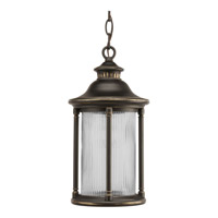 Progress Lighting Reside 1 Light Outdoor Hanging Lantern in Oil Rubbed Bronze P6502-108