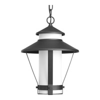 Via 1 Light 10 inch Black Outdoor Hanging Lantern