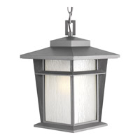 Progress Loyal 1 Light Outdoor Hanging Lantern in Textured Graphite P6521-136WB