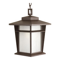 Progress Loyal 1 Light Outdoor Hanging Lantern in Antique Bronze P6521-20WB