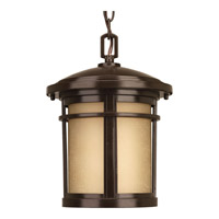 Progress Lighting Wish 1 Light Outdoor Hanging Lantern in Antique Bronze with Etched Umber Linen Glass P6524-20