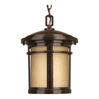 Progress Lighting Wish 1 Light LED Outdoor Hanging Lantern in Antique Bronze with Etched Umber Linen Glass P6524-2030K9