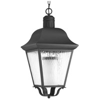 Andover 1 Light 13 inch Black Outdoor Hanging Lantern