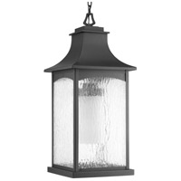 Maison 1 Light 11 inch Black Outdoor Hanging Lantern