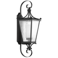Cadence 1 Light 31 inch Black Outdoor Wall Lantern, Large