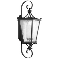 Cadence 1 Light 38 inch Black Outdoor Wall Lantern, Extra Large
