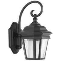 Crawford 1 Light 13 inch Black Outdoor Wall Lantern, Small