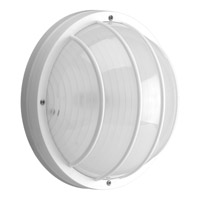 Progress Lighting Non-Metallic 2 Light Outdoor Wall Lantern in White P7337-30EBWB