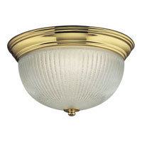 Progress Lighting Clear Ribbed Glass 2 Light Close-to-Ceiling in Polished Brass P7364-10