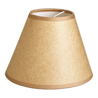 Progress Lighting Signature Shade P8640-01