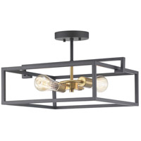 Progress P350120-143 Blakely 2 Light 17 inch Graphite Semi-Flush Mount Ceiling Light Pendant Convertible Design Series