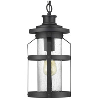 Progress P550031-031 Haslett 1 Light 8 inch Black Outdoor Hanging Lantern
