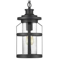 Progress P550031-031 Haslett 1 Light 8 inch Black Outdoor Hanging Lantern