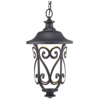Progress P550037-031-30 Leawood Led LED 10 inch Black Outdoor Hanging Lantern Design Series