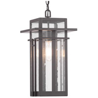 Boxwood 1 Light 9 inch Antique Bronze Outdoor Hanging Lantern