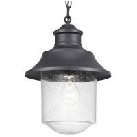 Progress P550043-031 Weldon 1 Light 10 inch Textured Black Outdoor Hanging Lantern