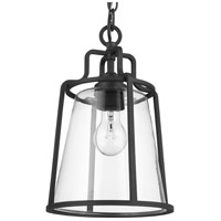 Progress P550065-031 Benton Harbor 1 Light 9 inch Textured Black Outdoor Hanging Lantern, with DURASHIELD alternative photo thumbnail